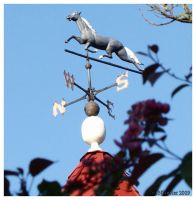 Horse Weather Vane by texasghost