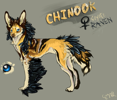 Chinook by infinite-scribbles