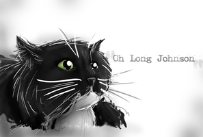 Oh Long Johnson by Skyao