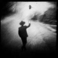 Evidence by intao