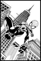 Spidergirl Cover by Kriss777