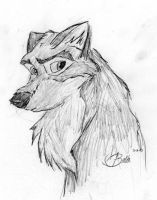 Balto by ShadowCheetah