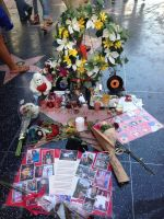 MICHAEL JACKSON'S STAR ON JUNE 25, 2014 by KerensaW