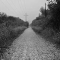 The Road by chirilas