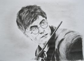 Harry Potter by Bubuka812