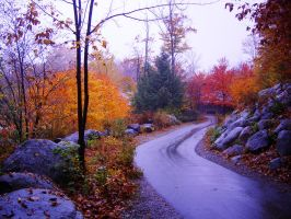 Fall in New England by AndySerrano