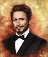Robert downey jr by lane-nee-chan
