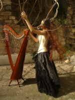 Celtic Harp Stock 2 by Harpist-Stock