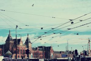 Amsterdam.II by anni-psych0wx3