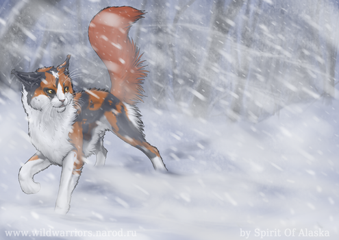 Redtail by Spirit-Of-Alaska