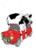 A Cow on a Mini by Tick-Tock-BANG