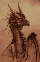 Oh look - a dragon by Yenvaloce