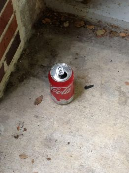 Lonely Coke Can by speedmanic