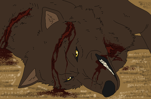 Fallen Wolf.... by WhiteWolfCrisis13