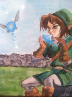 Link and navi by Canadagirlhetalia