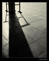 IN THE SHADOWS 2 by 8088