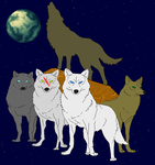 Wolf Pack for yinyangswings by vidkid19962