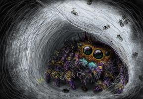 Jumping Spider Mommy with Babies by NadilynBeato