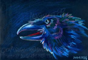 Raven - oil pastels by AugustAnna
