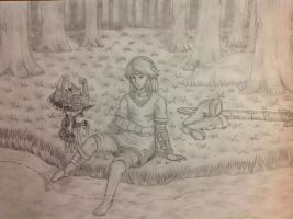 Twilight princess Link is hurt by Dragonauroralight