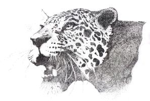 Stippling of leopard by Mickey1990