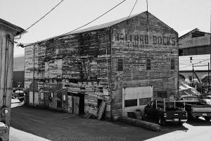Seattle, August, 2010, 062 by photoscot