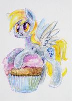 Muffin by Maytee