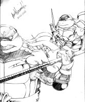 Donatello and Raphael by AmirKameron