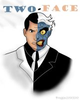 B:TAS Two-Face by dragon2000200