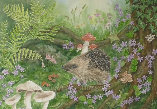 The Foraging Hedgehog. by SueMArt