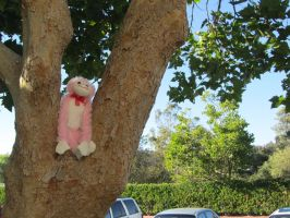 Monkey on a tree by princesskhym