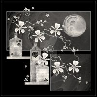 Moonlit Orchids by rockgem