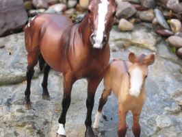 Phoenix and her foal 2 by beautyimmortal