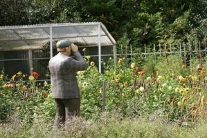 awesome figures in Flora garden 3 by ingeline-art