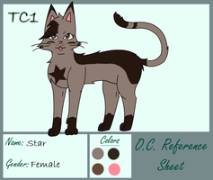 Star Reference Sheet by slycooper998