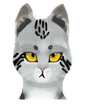 WC|Headshot cat for fanfiktion book by TheWarriorDogs