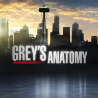 ABC's Grey's Anatomy by mildor666