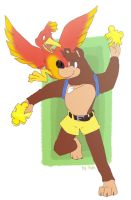 Banjo Kazooie by yolin