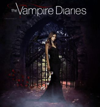 Elena Gilbert/Katherine Pierce The Vampire Diaries by Bookfreak25