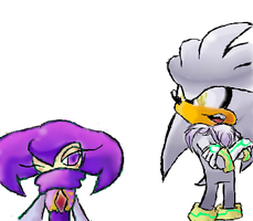 NiGHTS and Silver the Hedgehog by Rokkan-Illidian