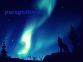 For puregothwolf by sinisterinsomniac