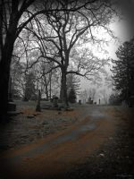 cemetery drive by wroquephotography
