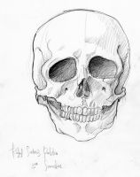 Skull Front by Heal-Me