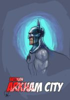 Batman Arkham City by nirman