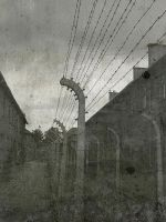 Concentration Camp - no Hope by erlebnis
