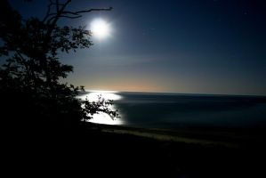 Moonlit Beach by actographer