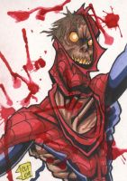 Zombie Spiderman Sketch Card by chris-foreman