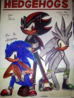 The Hedgehogs by Spam5192