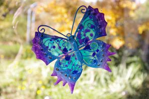 Butterfly on glass by Frailbeth