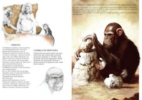 chimps by Nardius